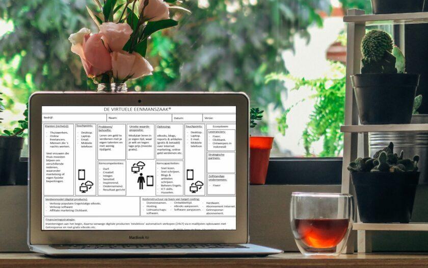 Online starten met een virtuele eenmanszaak door Tony de Bree